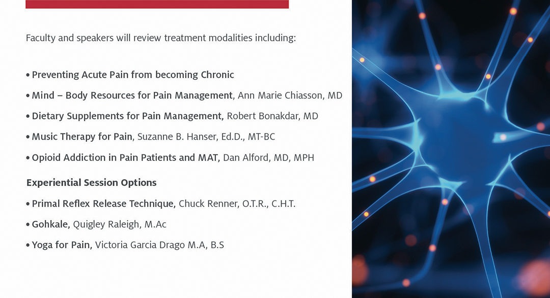 Integrative Approaches to Pain Management Pre-Conference